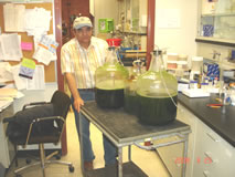 Prof-Aecio-DSilva Growing Algae Lab